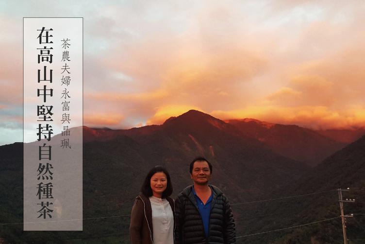 東泰茶園:賴永富、柯晶珮夫婦